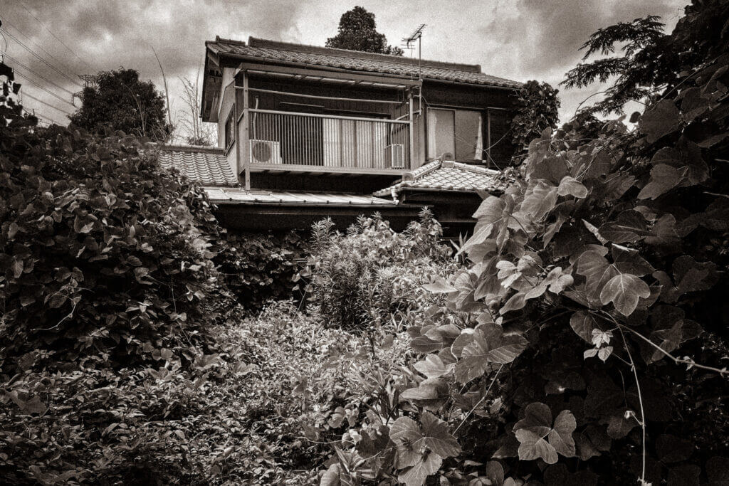 An abandoned house being consumed by plants in Higashi Iwatsuki, Saitama City